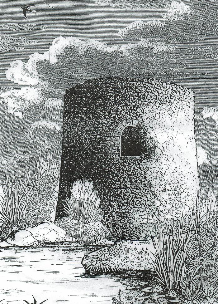 Torre colomera22072017